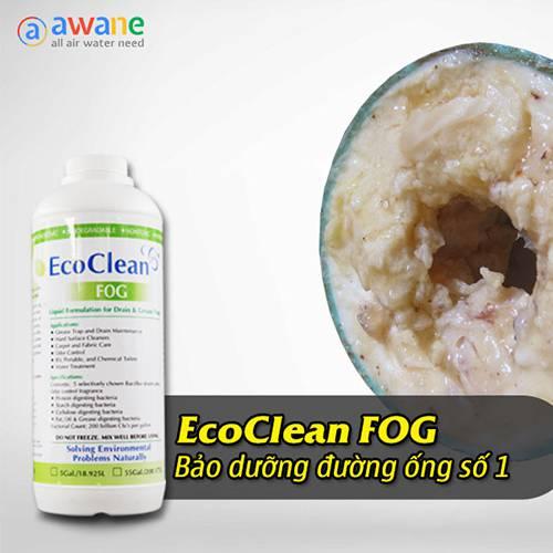 Vi sinh xử lý dầu mỡ EcoClean FOG - Chai 1 Lít (1)