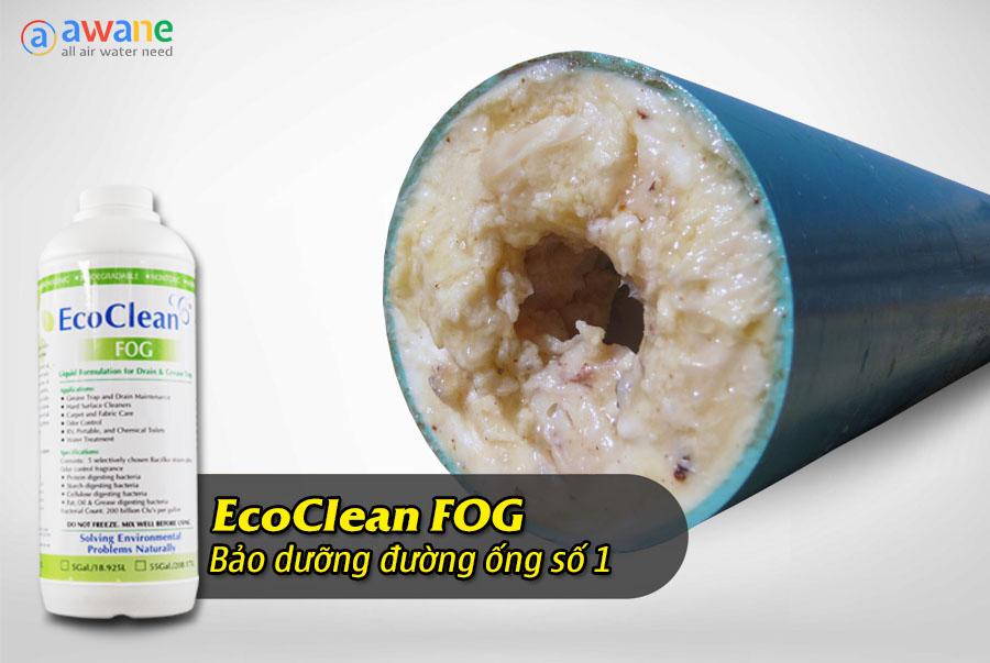 Vi Sinh Xử Lý Dầu Mỡ - Dung Dịch EcoClean FOG (1)